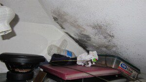 Mold testing should be considered for people with allergies to mold.