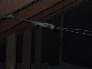 and Tube Wiring - Nonprofit Home Inspections And Tube Wiring Home Inspection on insulation inspection, framing inspection, interior inspection, plumbing inspection, hvac inspection,