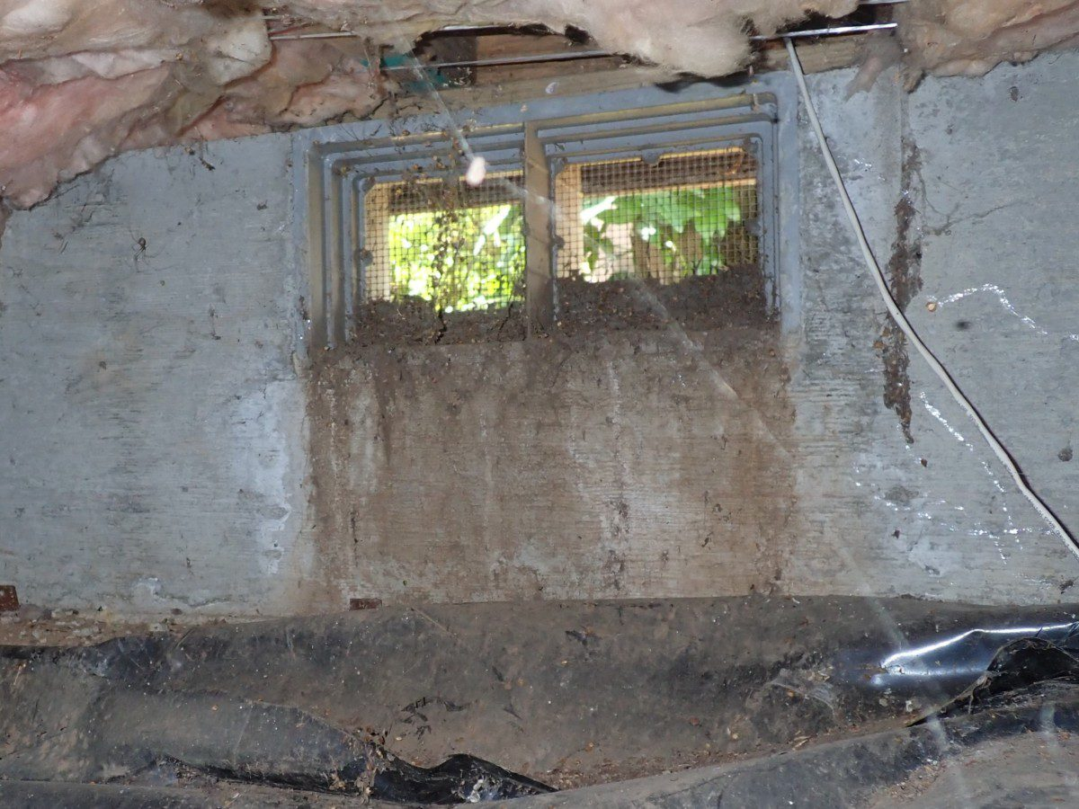 Inspection of crawlspaces in PDX