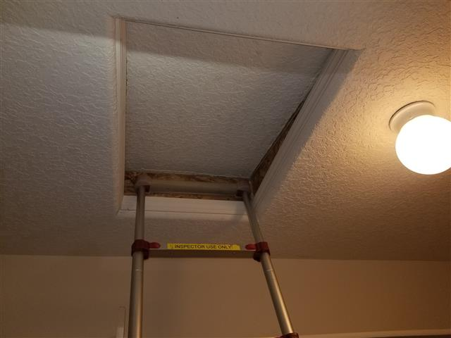 Adding Weather Stripping to Attic Access Hatch